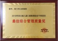 2018年湖北省儿童口腔疾病综合干预项目最佳综合管理质量奖